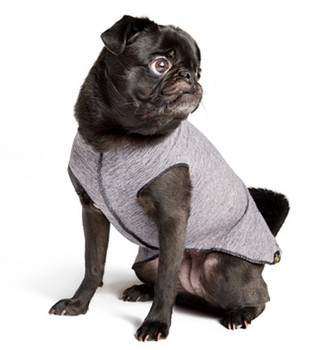 Sun Shield Pet Dog Tee - Grey Heather
