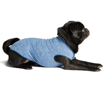 Sun Shield Pet Dog Tee - Blue Heather