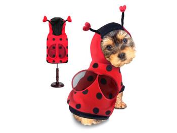 Costume - Ladybug