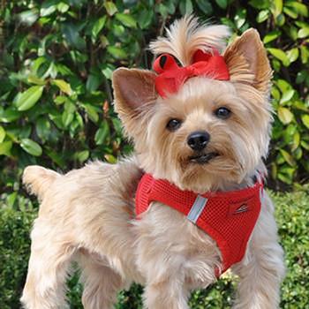 American River Ultra Choke Free Dog Harness - Red