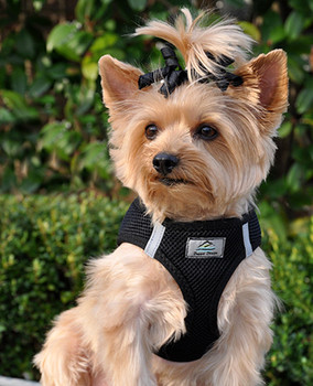 American River Ultra Choke Free Dog Harness - Black