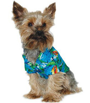 Aloha Tropical Dog Shirt