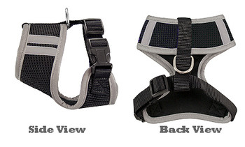 NFL Oakland Raiders Mesh Dog Harnesses