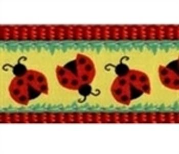 Doodlebug Dog Collars