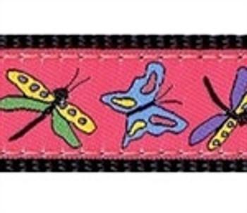 Papillon on Kelly Dog Collars
