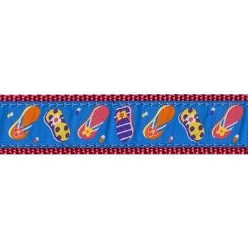 Summer Sandals 3/4 & 1.25 inch Dog Collar, Harness