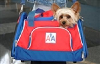 American Airlines Sport Duffel