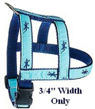 Aqua Starfish 3/4 & 1.25 inch Dog Collar, Harness.