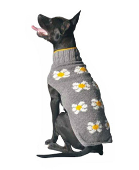 Daisies Knit Dog Sweaters