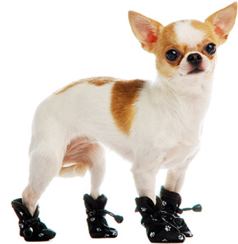 Slip On Paws Dog Boots - Black