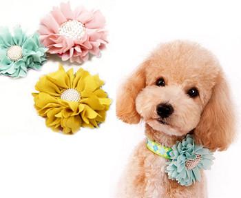 EasyBow Dog Collar Flowers