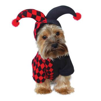 Jester Pet Dog Costume