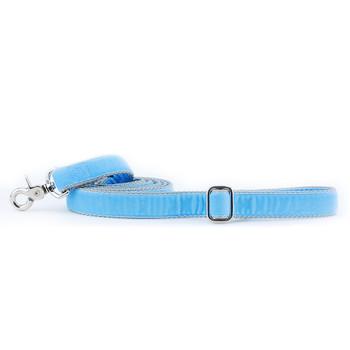 Light Blue Swiss Velvet Dog Leash