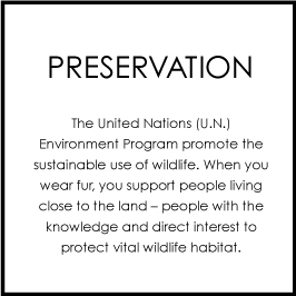 preservation.jpg