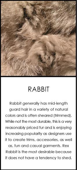rabbit-fur-care.jpg