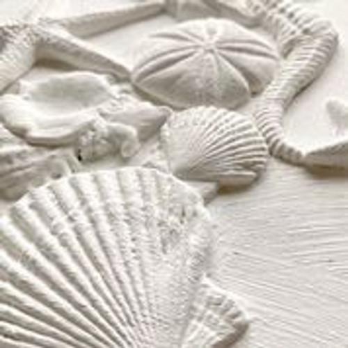 Sea Shells Decor Moulds™