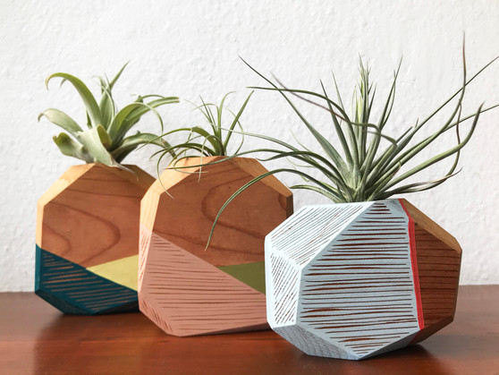 Wooden Airplant Holders