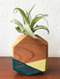 Wooden Airplant Vase