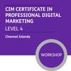CIM Certificate in Professional Digital Marketing (Level 4) - Premium/Workshops - CI