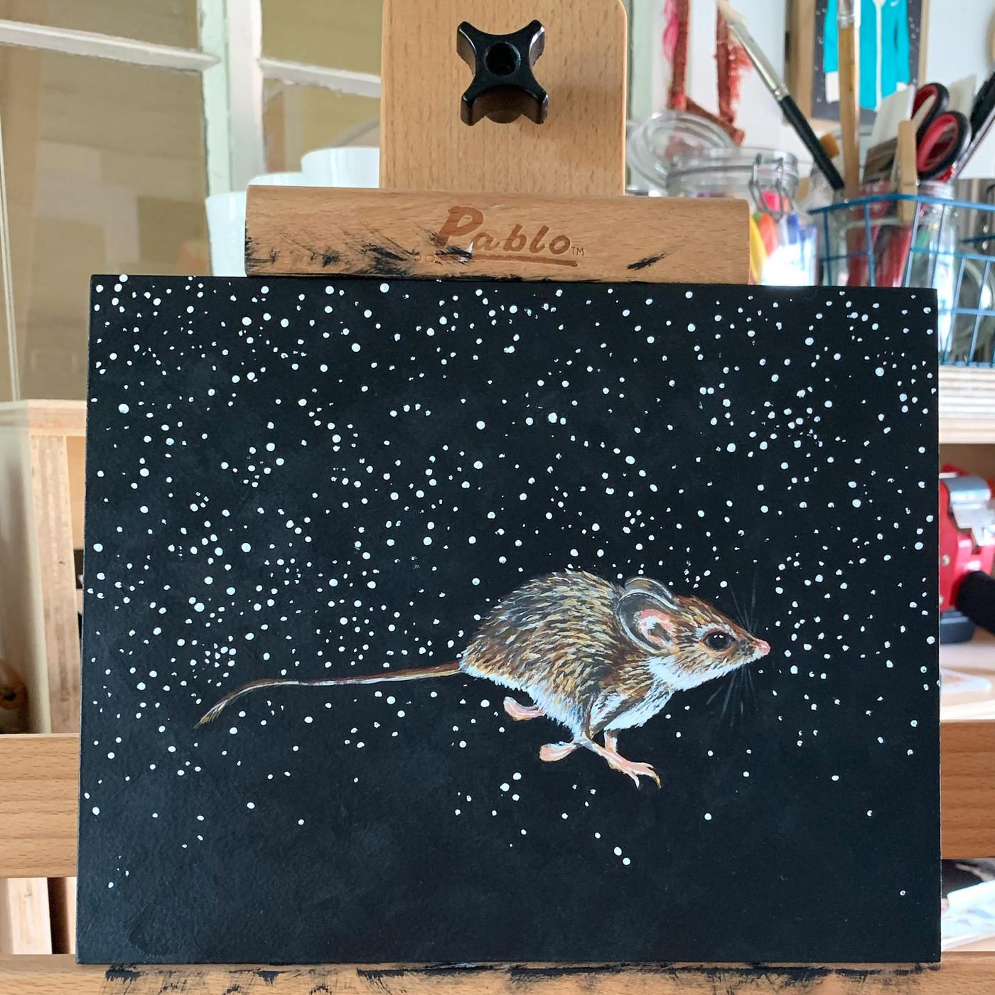 Palo Duro Mouse (Peromyscus truei comanche- Threatened)