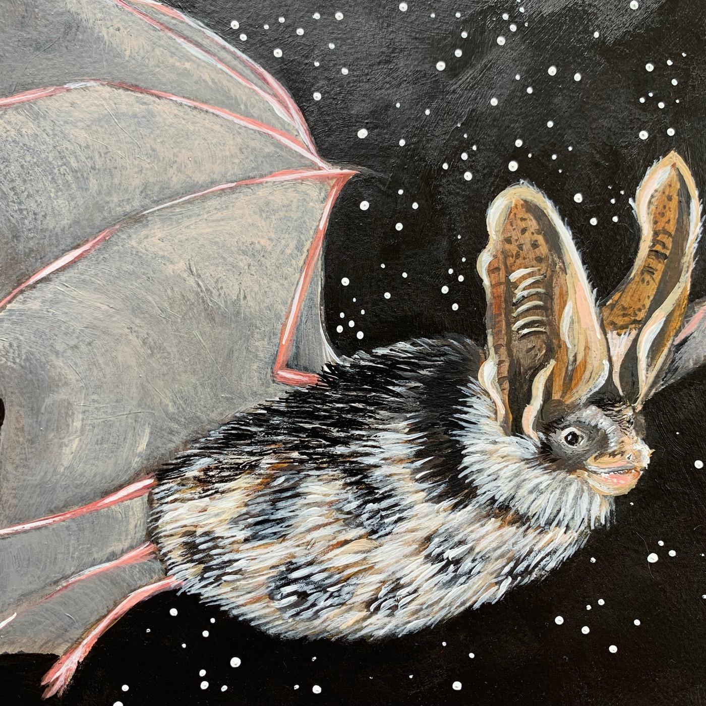 Spotted bat (Euderma maculatum-Threatened)