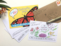 Butterfly Cards | Draw Your Own (6-Variety / Includes 1 Birthday + 1 Thank You)