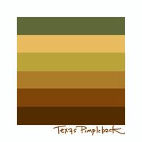 Texas Pimpleback (Quadrula petrina)- Threatened