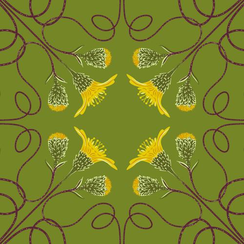 Houston Daisy (Rayjacksonia aurea)