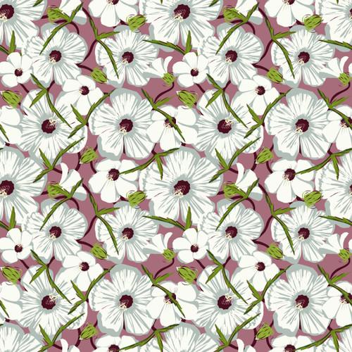 Neches River Rose-mallow (Hibiscus dasycalyx)