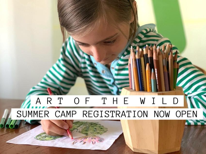 ART OF THE WILD SUMMER CAMP!