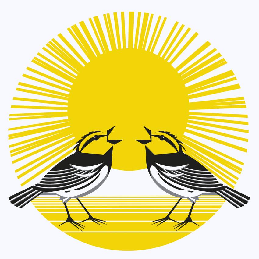 Golden-Cheeked Warbler (Setophaga chrysoparia) - Endangered Species Art