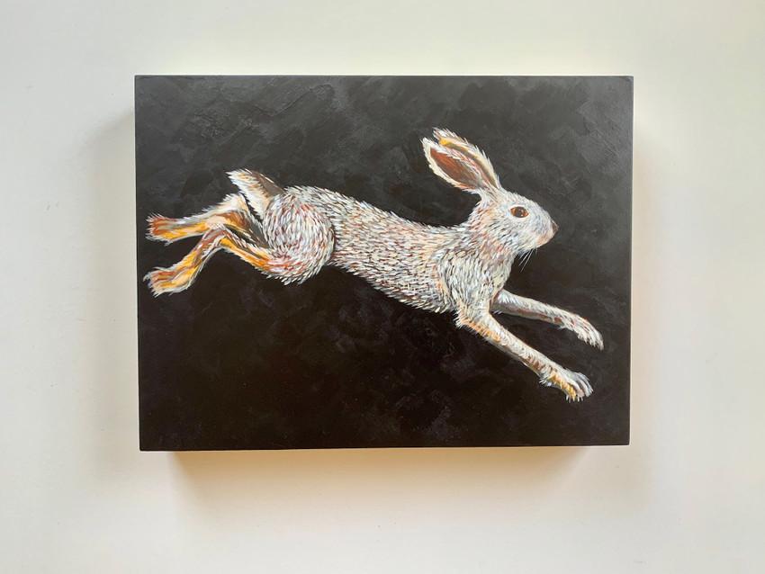 Painting a swimming rabbit! Meet the Swamp Rabbit (Sylvilagus aquaticus- ).