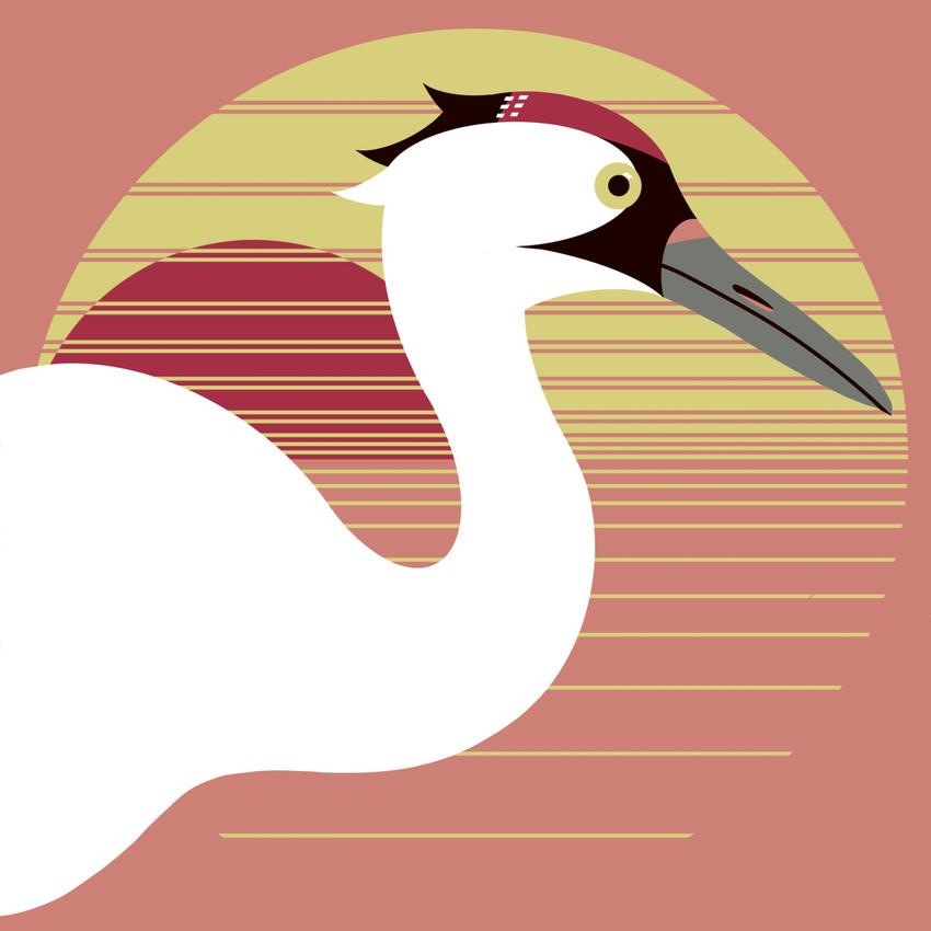 Whooping Crane  (Grus americana)- Endangered Bird Art