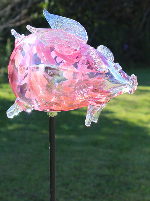 """Flying Pig """"Ms.Chuleta Can Can"""""""