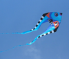 9ft Pyro Fish Delta Kite - Cool
