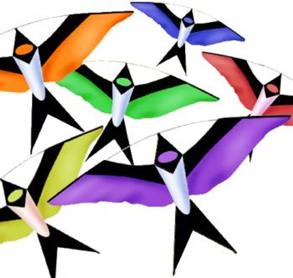 Flock of Swallow Kites