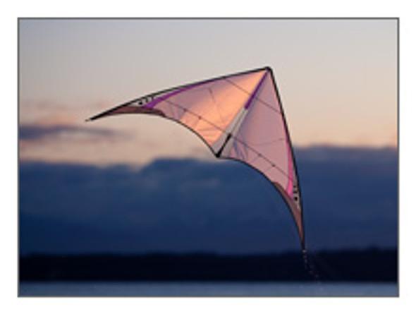 Prism 4-D Stunt Kite
