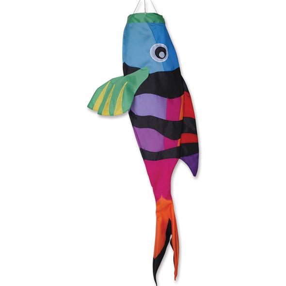 Sargeant Major Fish