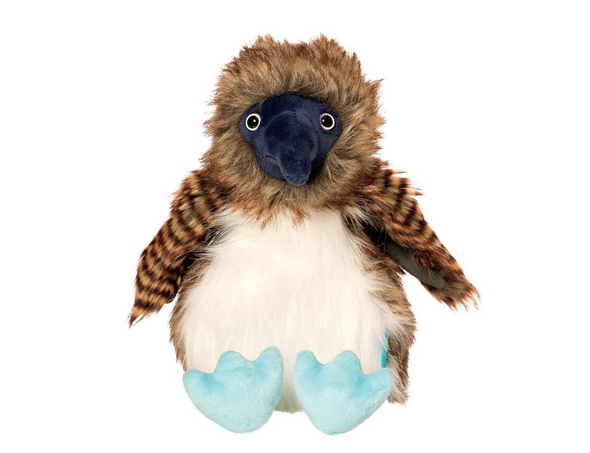 Manhattan Benny the Blue Footed Boobie