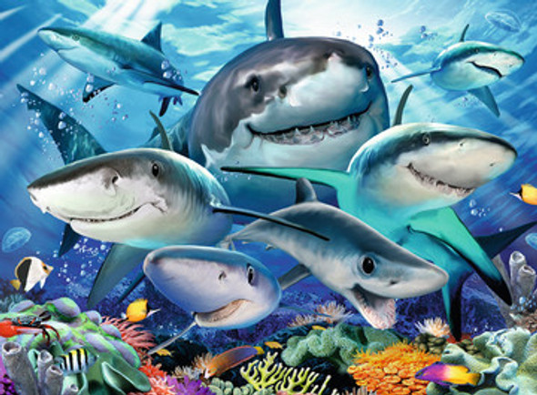 Smiling Sharks 300 pc XXL Puzzle