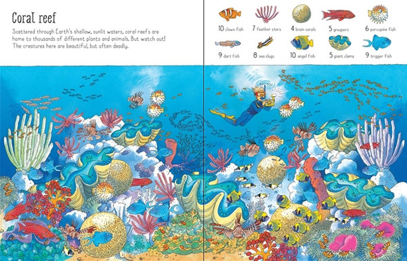 1001 Things to Spot in the Sea book