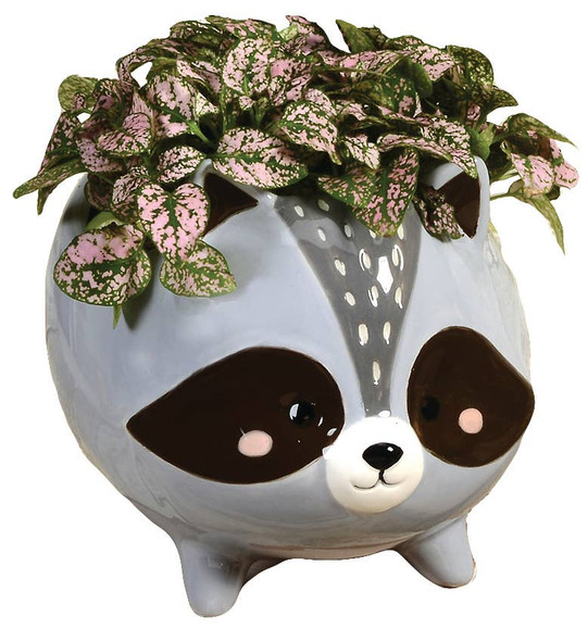 Raccoon Ceramic Planter
