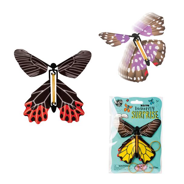 Butterfly Suprise