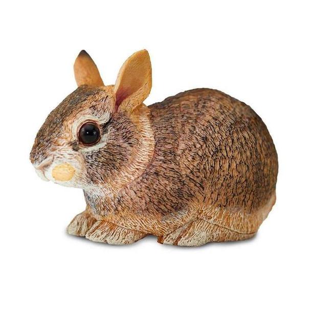 Eastern Cotton Bunny-Safari