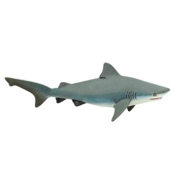 Saf Bull Shark