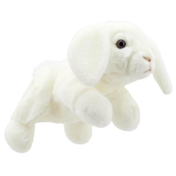 Lop White Rabbit