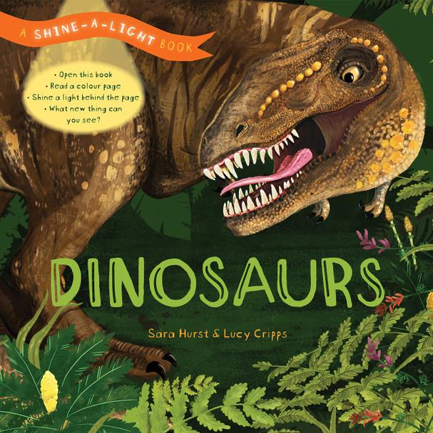Dinosaurs Shine a Light Book