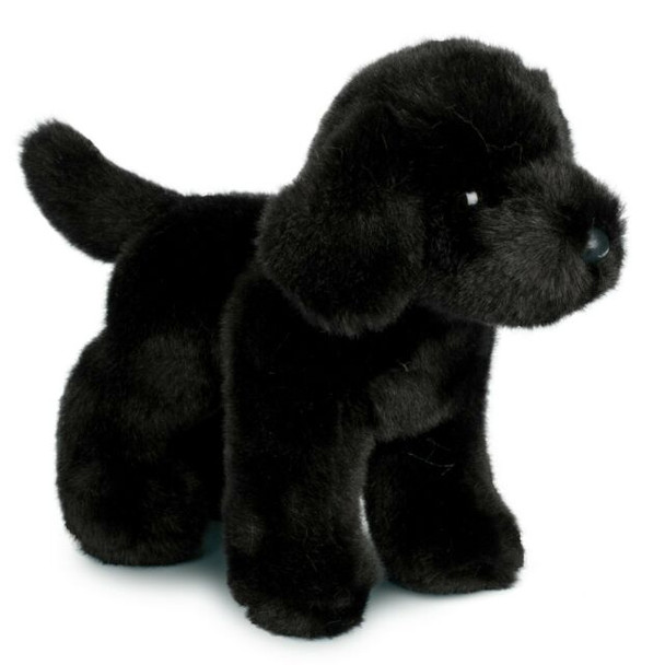 Bear Black Lab Plush