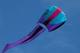 Prism Bora 5 Kite - Frost