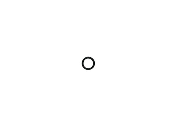 M202331 Oring